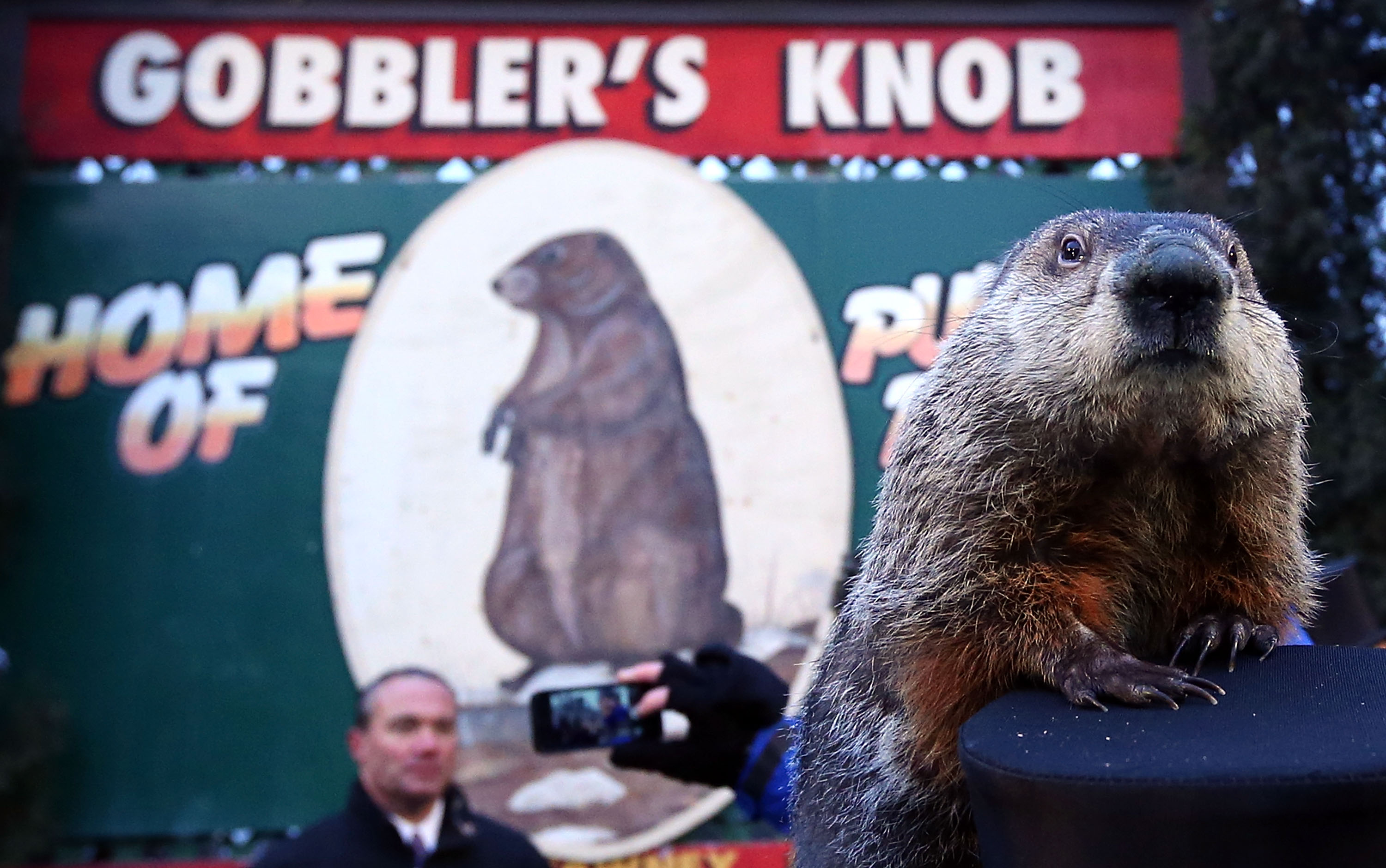 Annual Groundhog's Day Ritual Held In Punxsutawney, Pennsylvania | Photo by pix11.com