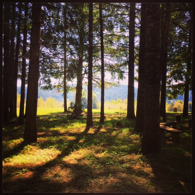 Domaine Meriwether property boasts the perfect area for camping