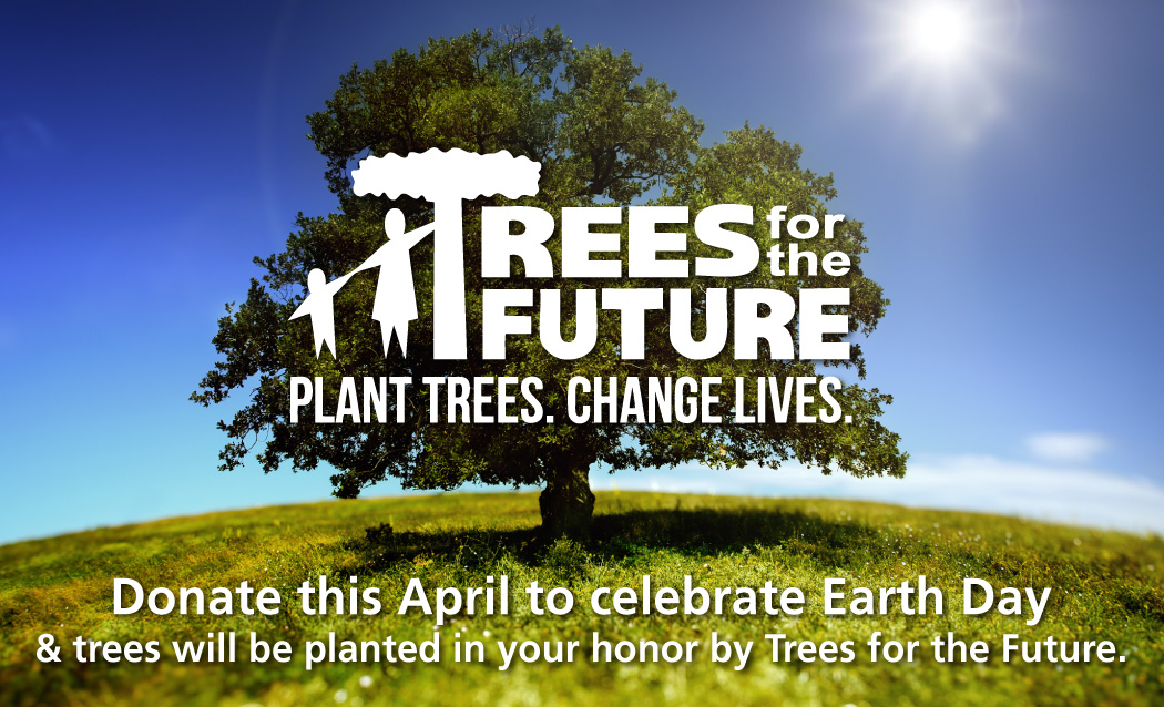 Trees For The Future.  Plant Trees.  Change Lives