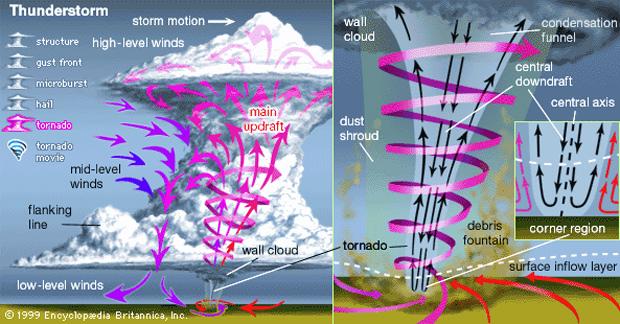 Tornado Structure | Image by bbs.wenxuecity.com
