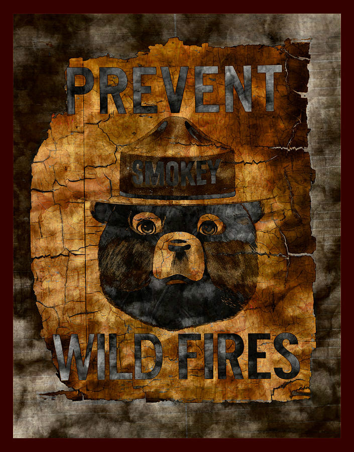 Smokey The Bear Poster | Image by John Stephens  pixels.com
