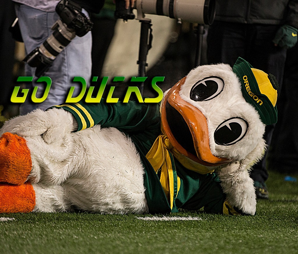 Go Ducks
