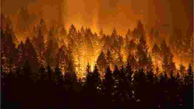 Wagner Wildfire