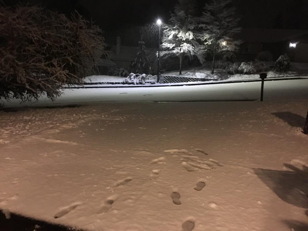 Snowfall For 2/24